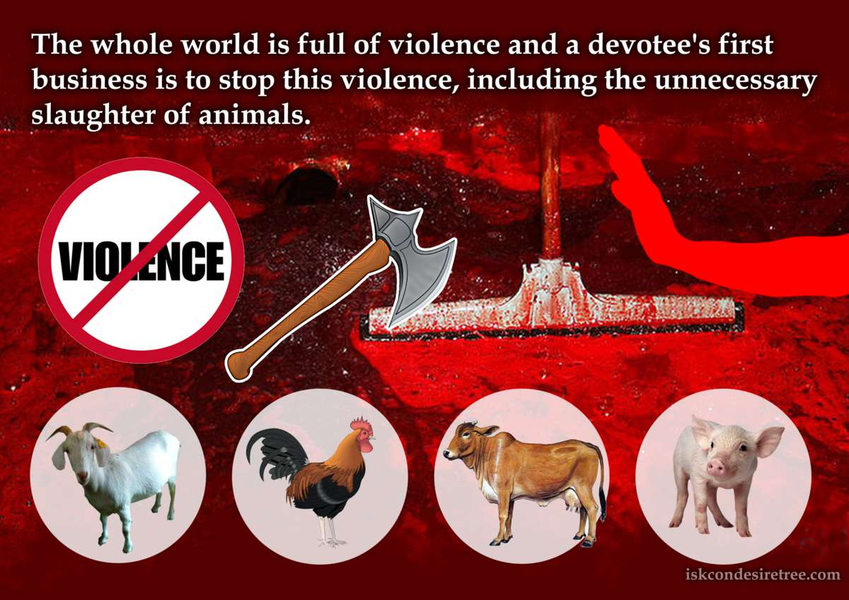 Srila Prabhupada on Stopping Violence