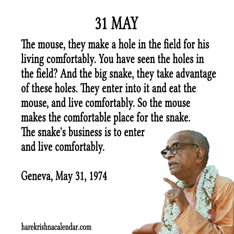 Prabhupada Quotes For The Month of May 31