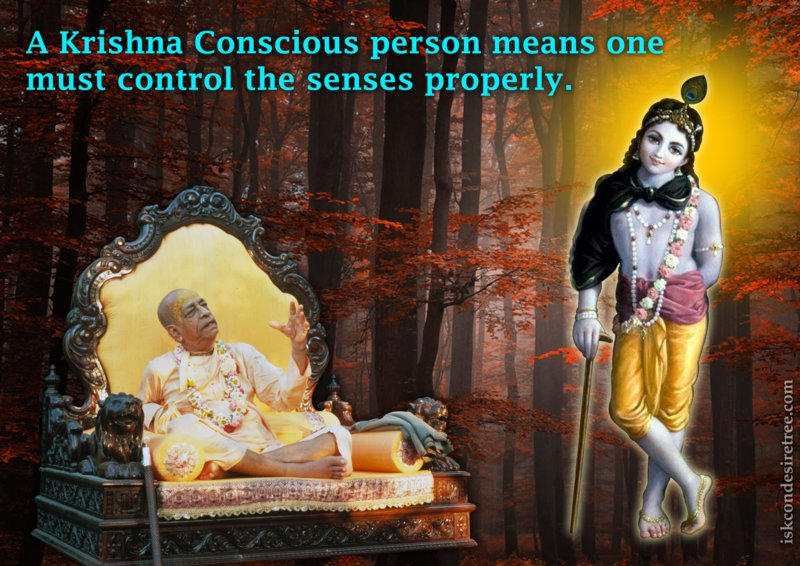 Bhakti Swarup Damodar Swami on Krishna Conscious Person