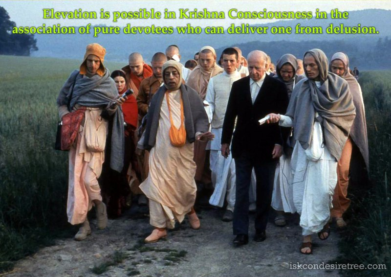 Srila Prabhupada on Elevation in Krishna Consciousness