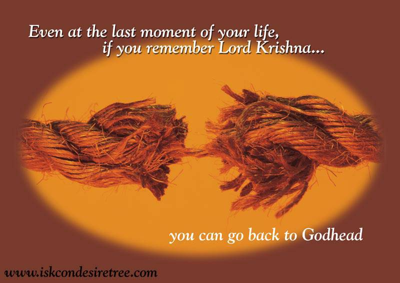 Quotes by Srila Prabhupada on Going Back to Godhead
