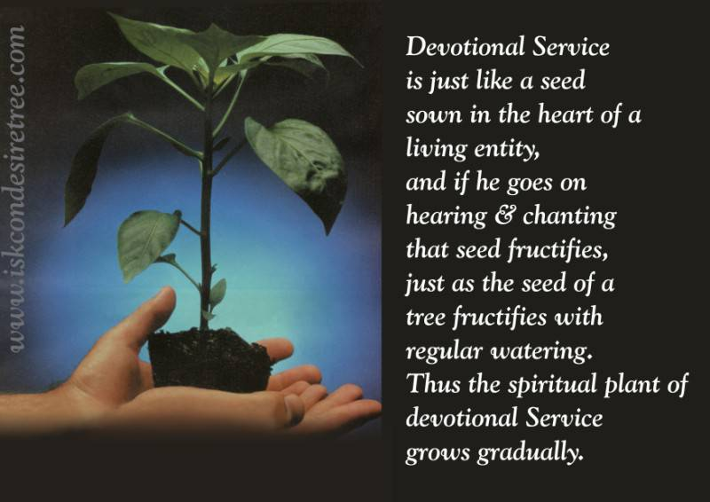 Quotes by Srila Prabhupada on Growth of Devotional Service