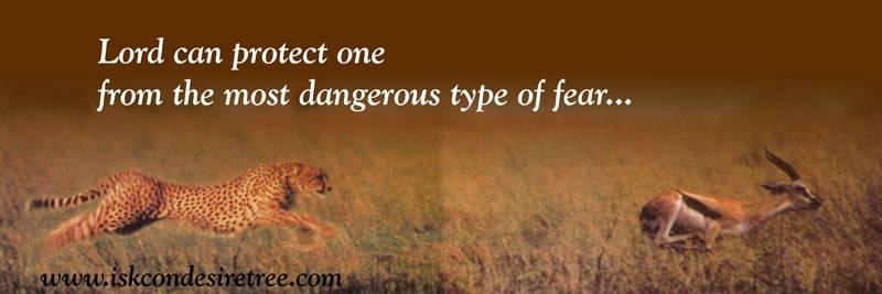 Quotes by Srila Prabhupada on Protection