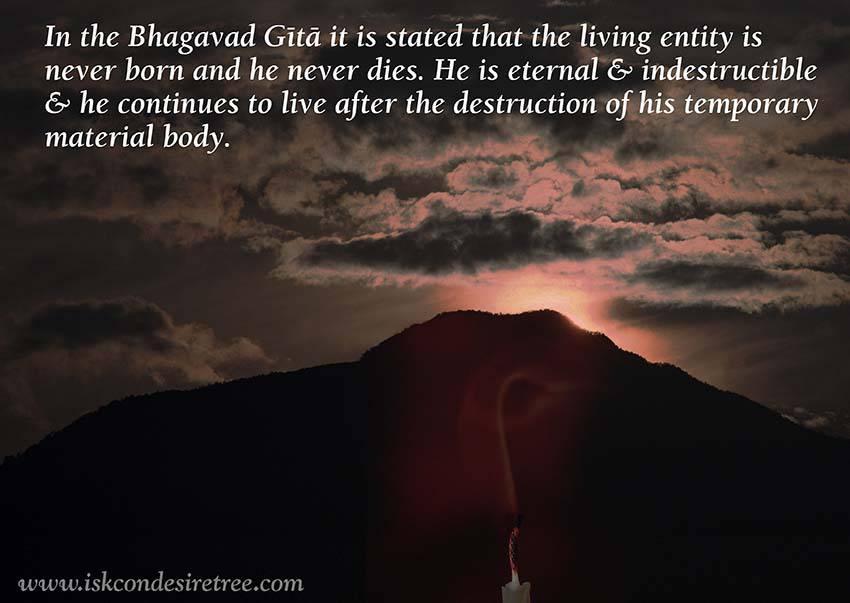 Quotes by Srila Prabhupada on The Living Entity