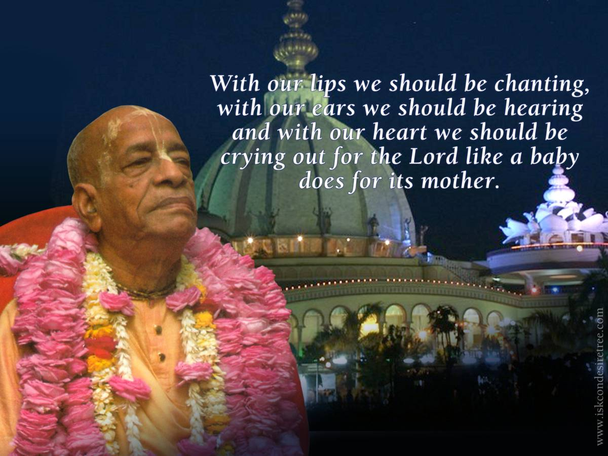 Quotes by Srila Prabhupada on What We Should Be Doing