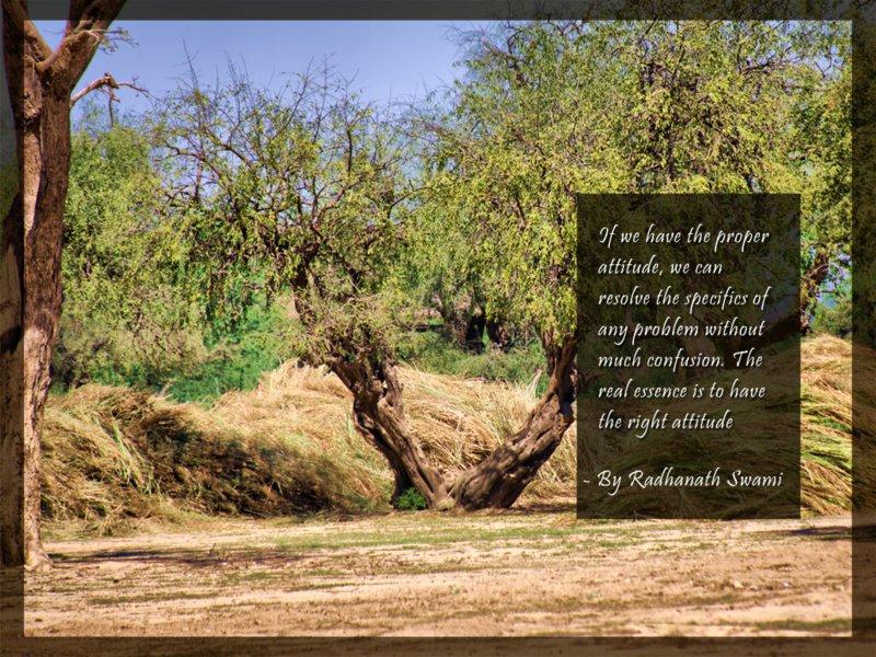 Radhanath Swami on Proper Attitude