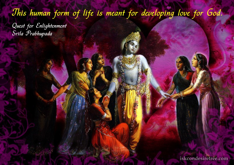 Goal of Human Form Of Life | Spiritual Quotes By ISKCON Desire Tree