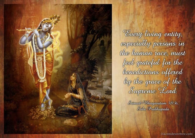 Srila Prabhupada on Gratitude