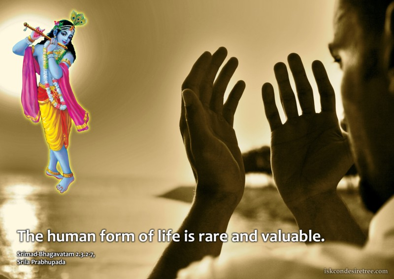 Srila Prabhupada on Human Form of Life