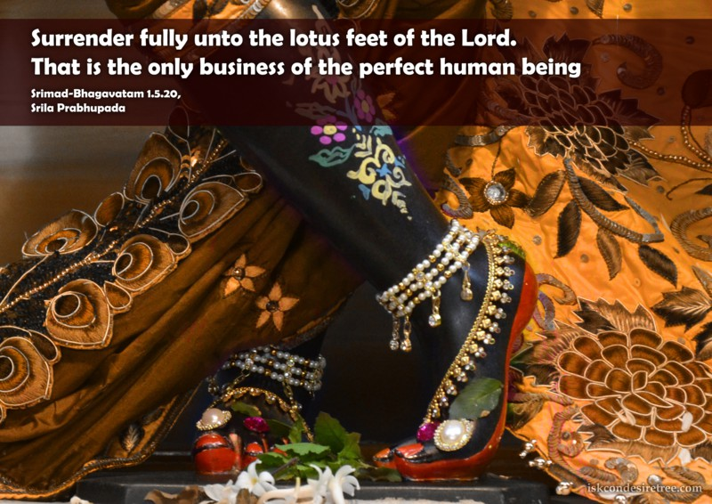 Srila Prabhupada on Only Business of The Perfect Human Being