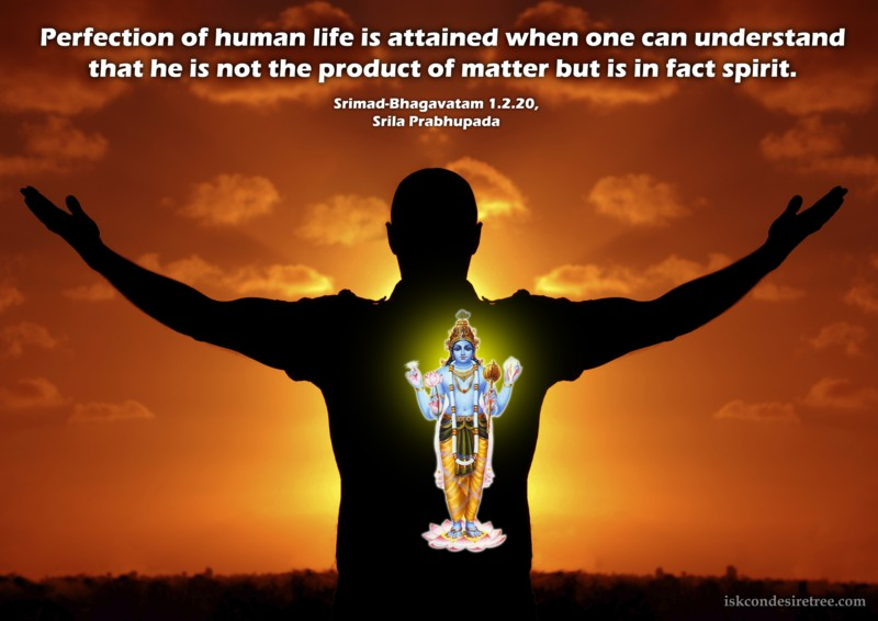 Srila Prabhupada on Perfection of Human Life