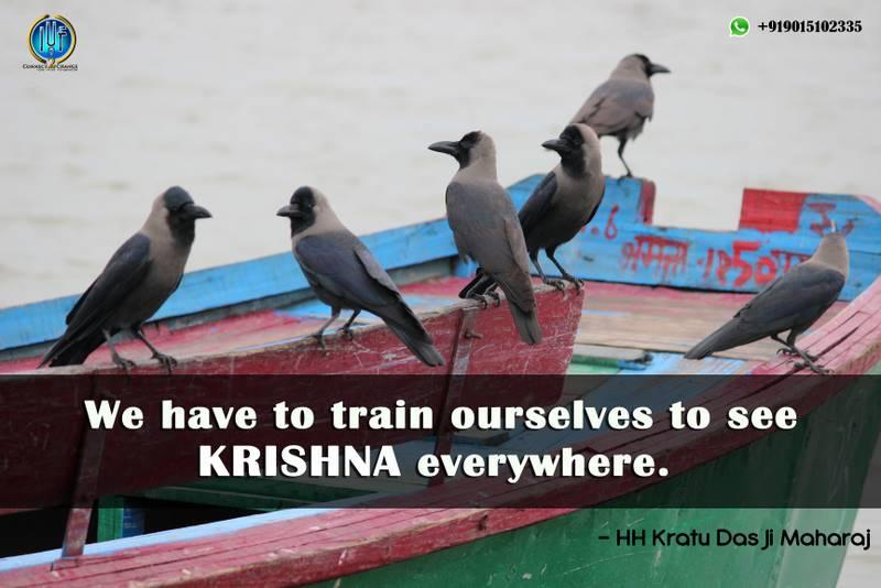 Krishna Everywhere