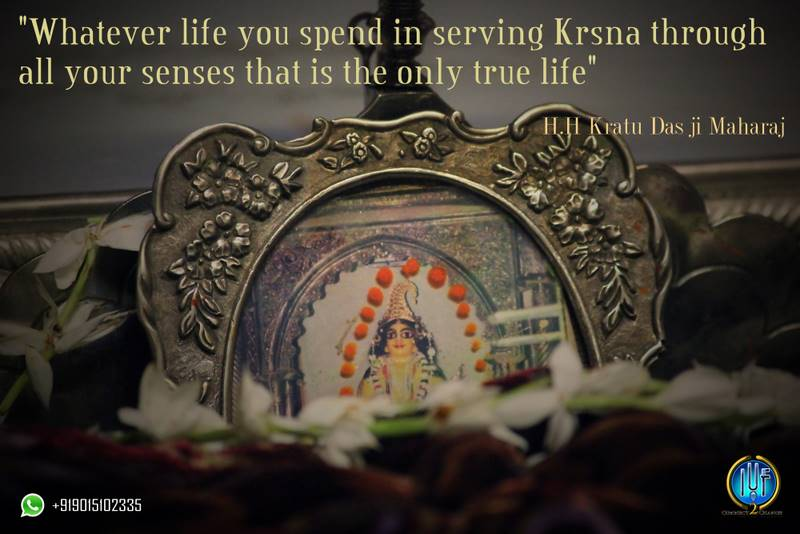 Serving Krishna