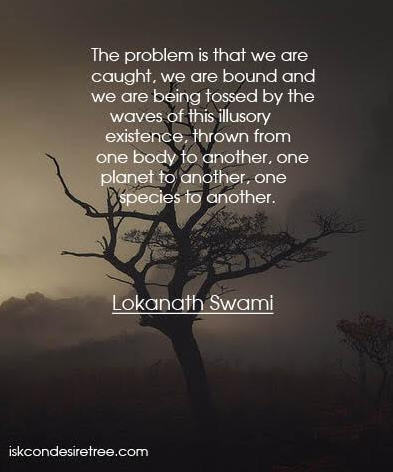 The problem is that we are caught