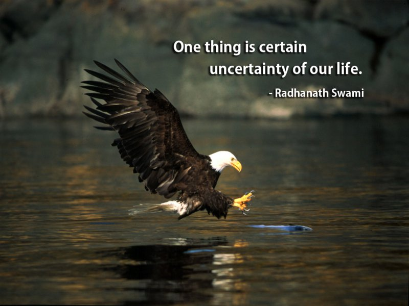Radhanath Swami on Life