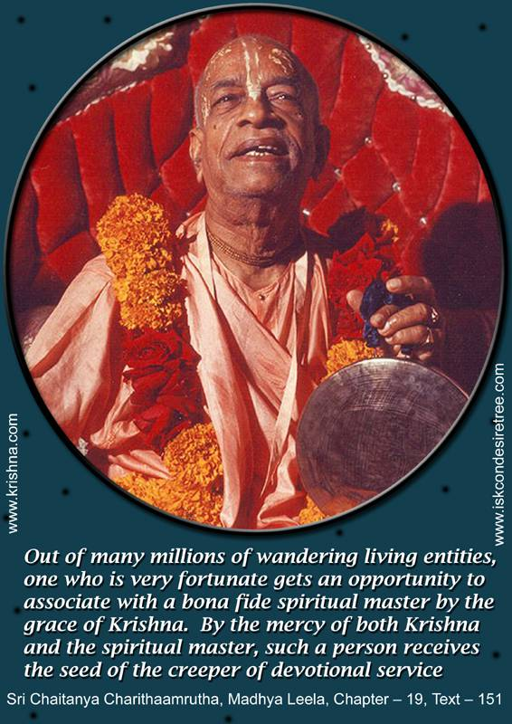 Quotes by Srila Prabhupada on A Fortunate Living Entity