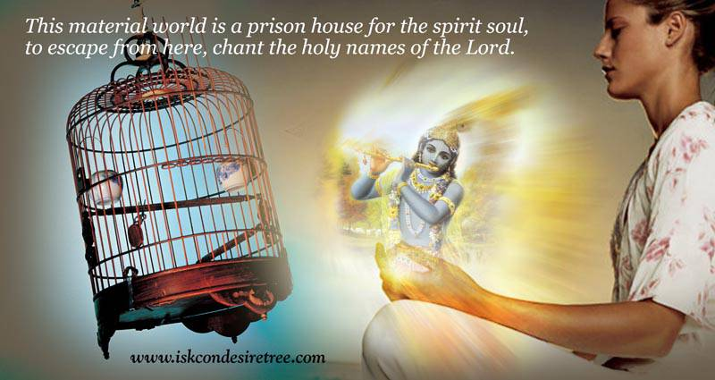 Quotes by Srila Prabhupada on Escaping From The Material World