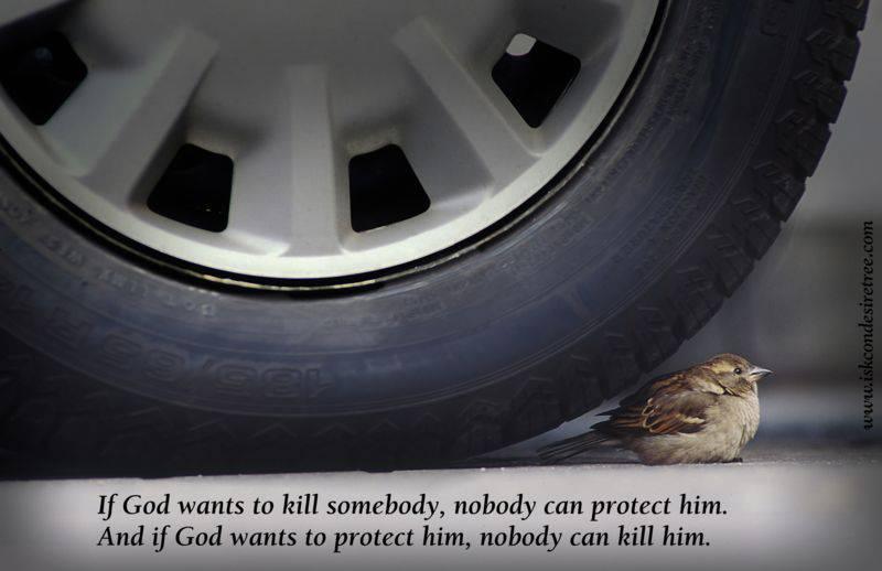 Quotes by Srila Prabhupada on God's Protection
