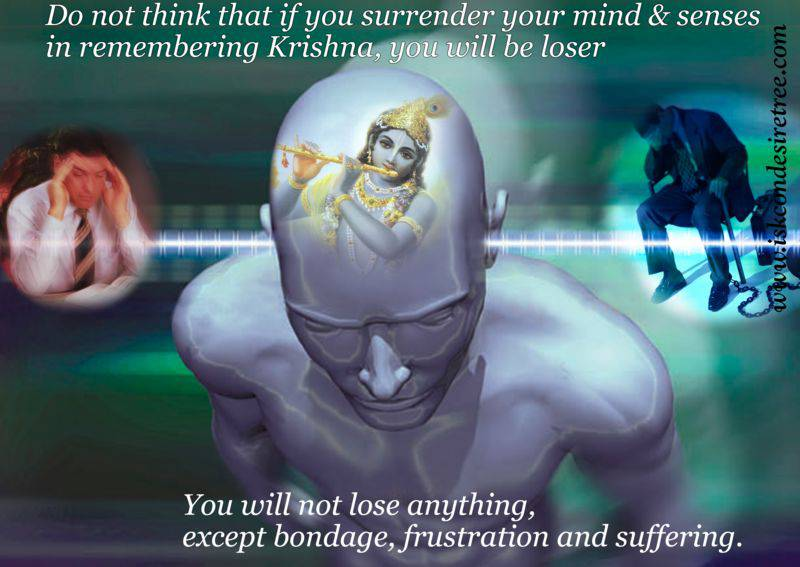 Quotes by Srila Prabhupada on Surrendering Our Mind And Senses To Krishna