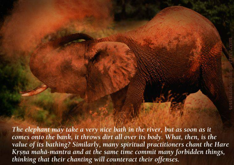 Quotes by Srila Prabhupada on The Mad Elephant Offence