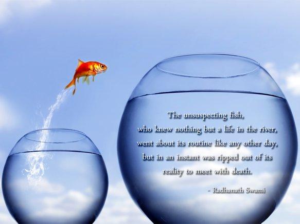 Radhanath Swami on Death