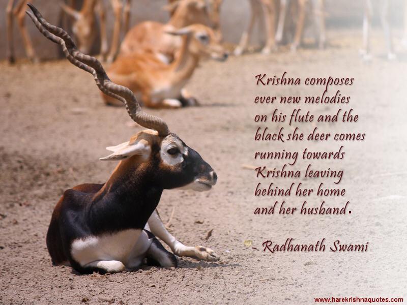 Radhanath Swami on Krishna's Flute