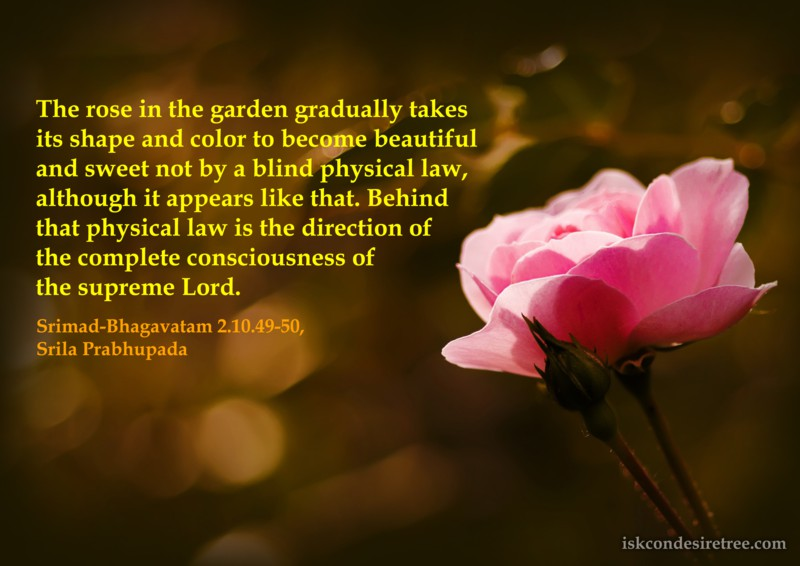 Srila Prabhupada on Direction of The Supreme Lord Behind Every Activity