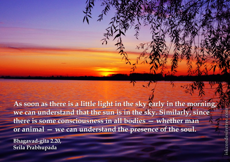 Srila Prabhupada on Presence of The Soul