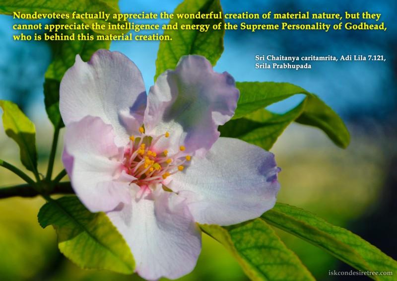 Chaitanya Caritamrta on Intelligence And Energy of The Supreme Personality of Godhead
