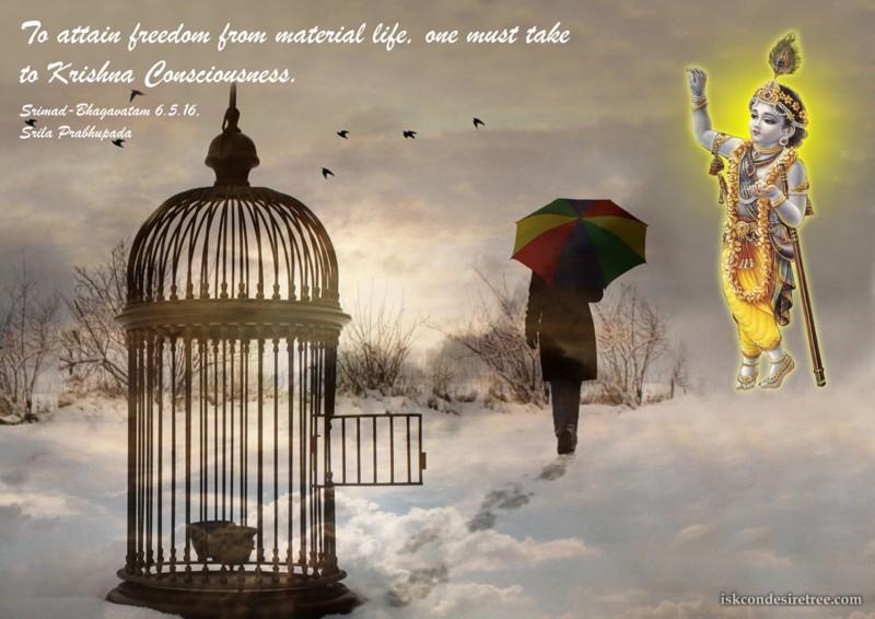 Srila Prabhupada on Attaining Freedom From Material Life