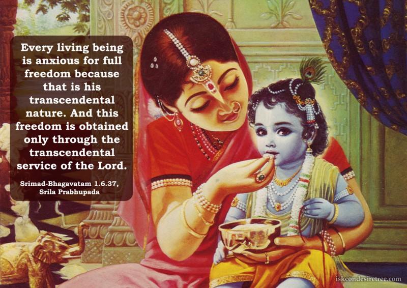 Srila Prabhupada on Attaining Freedom