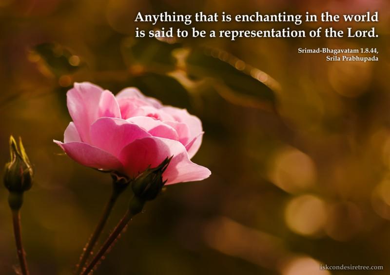 Srila Prabhupada on Enchanting Things In This World
