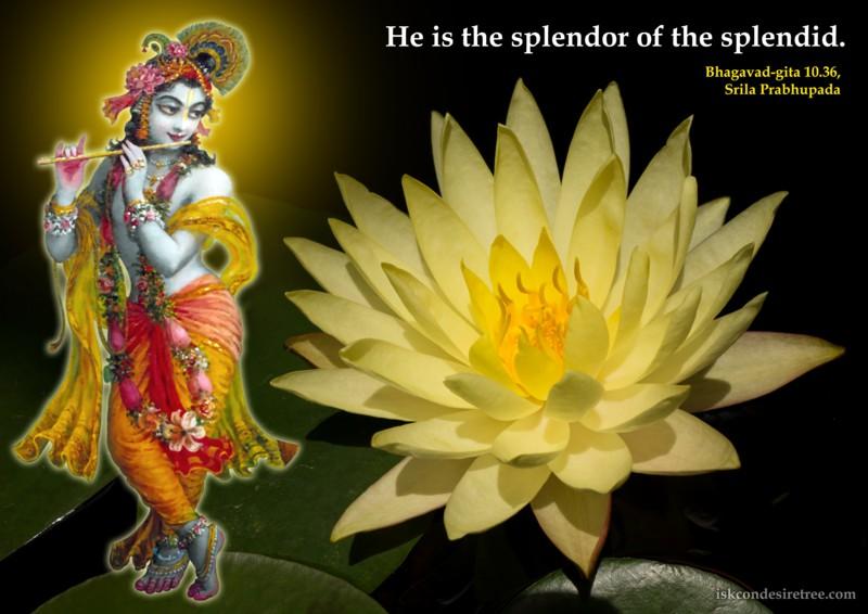 Srila Prabhupada on Supreme Lord's Opulence
