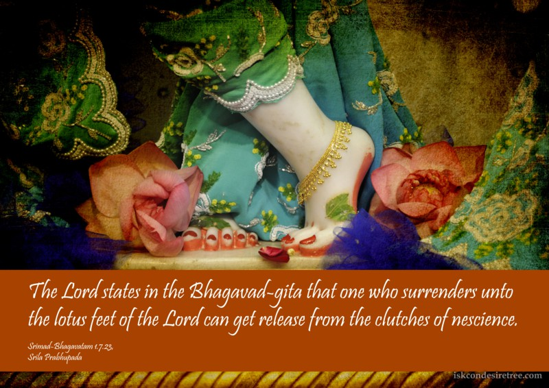 Srila Prabhupada on Surrendering Unto The Lord's Lotus Feet