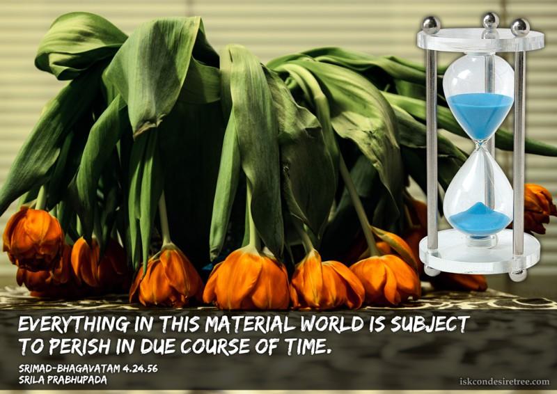Srila Prabhupada on Things in This Material World