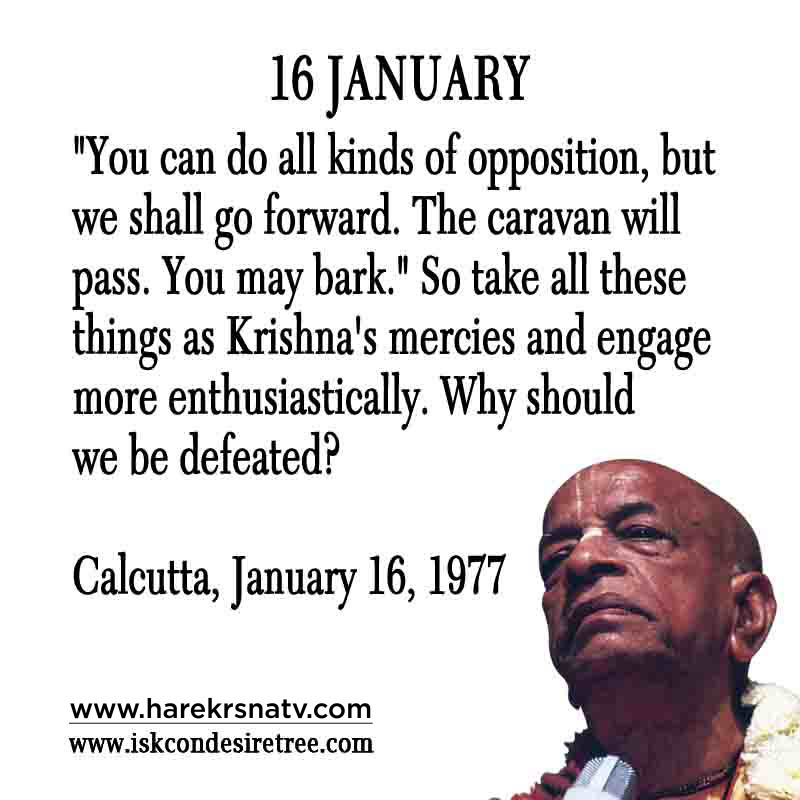 Prabhupada Quotes For The Month of January 16