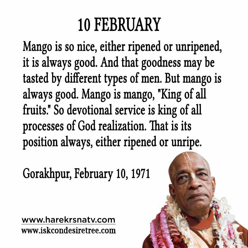Prabhupada Quotes For The Month of February 10