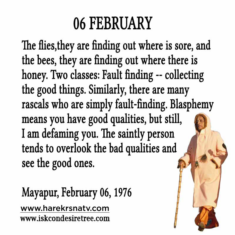 Prabhupada Quotes For The Month of February 6