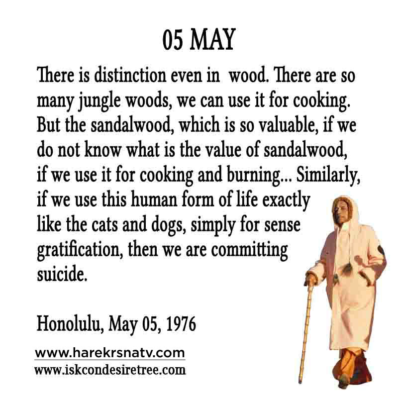 Prabhupada Quotes For The Month of 05 May
