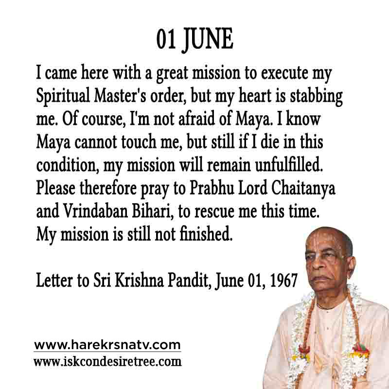Prabhupada Quotes For The Month of 01 June