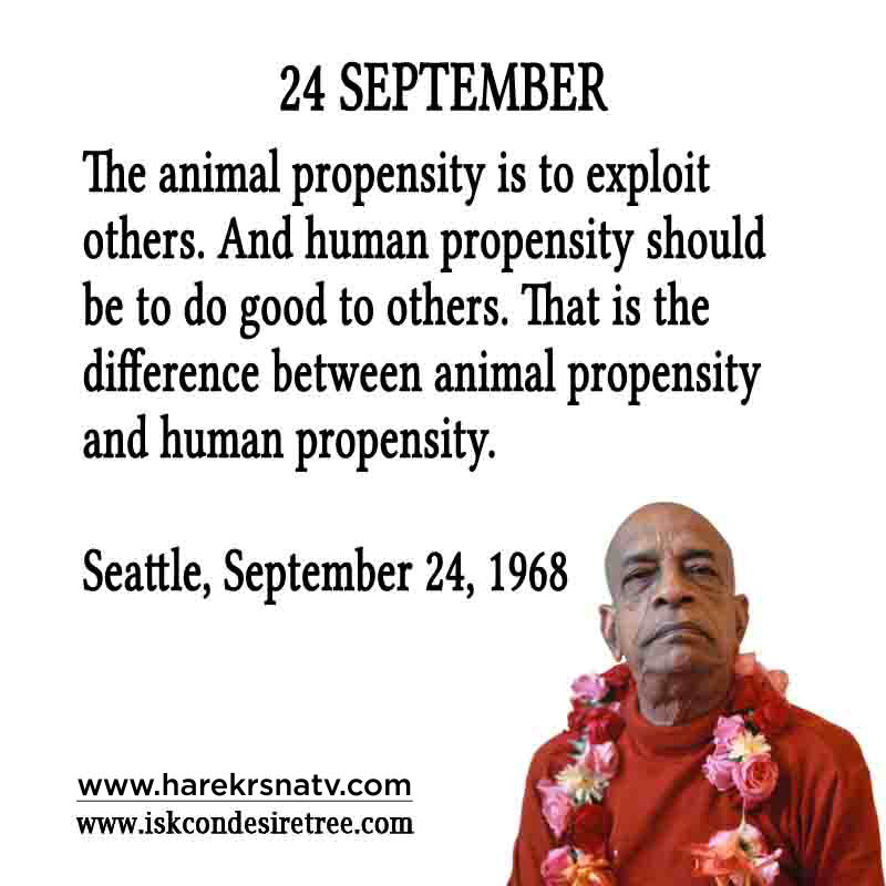 Prabhupada Quotes For The Month of 24 Sep